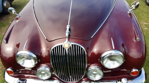 cars fest 010